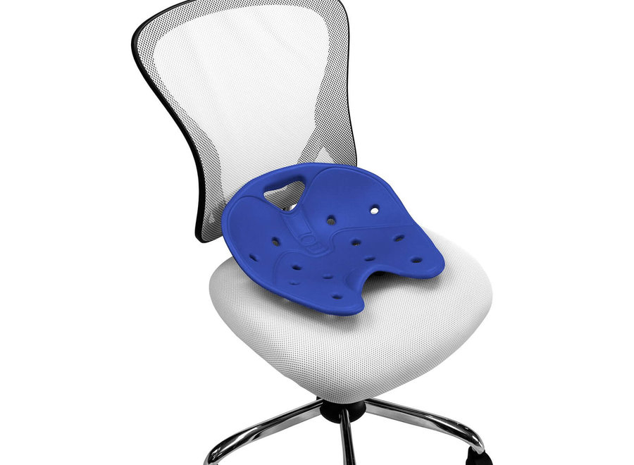 Backjoy Sitsmart Core Blau Rückenstütze