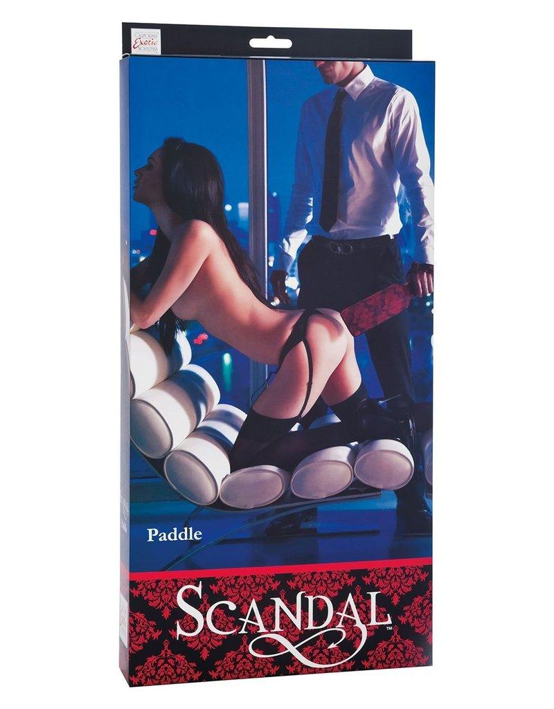 CalExotics CalExotics Scandal Paddle
