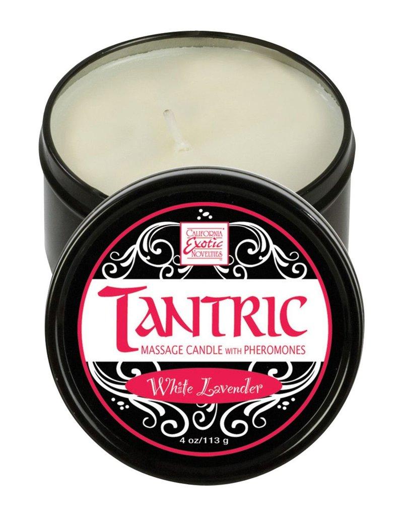CalExotics Tantric Massage Olie Kaars White Lavender
