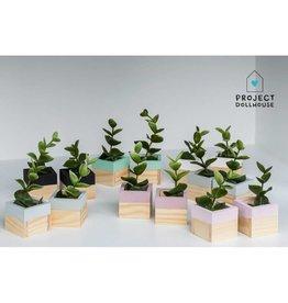 Project Dollhouse Modern Planter Set of 2