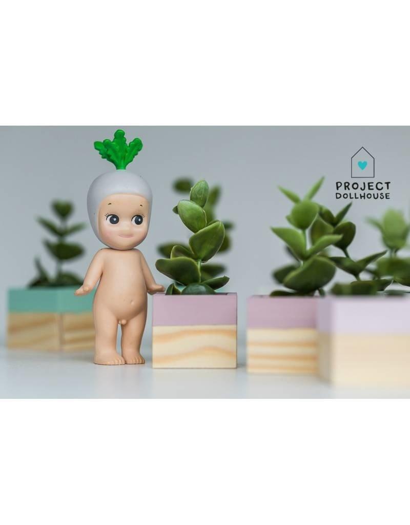 Project Dollhouse Plantenbakken Set van 2
