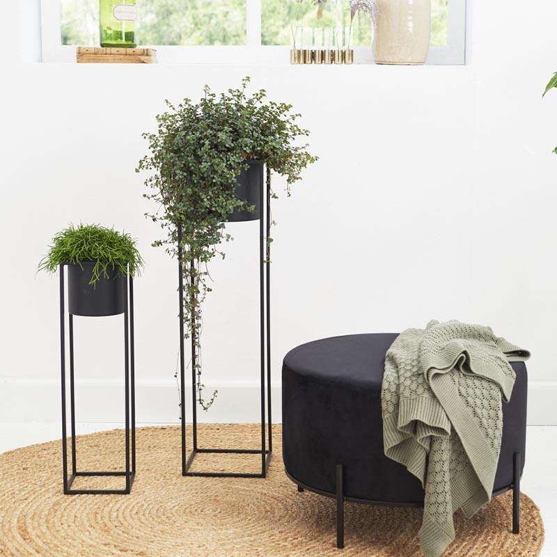 Set van 2 - Plantenbak Violet