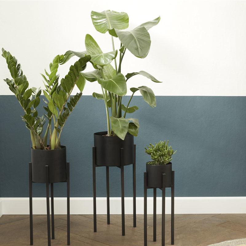 Set van 3 - Plantenbak Lotus