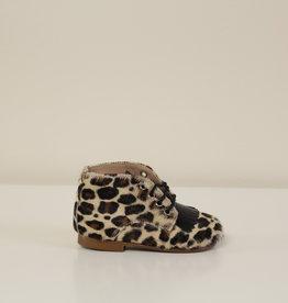 Eli 5609X veterschoentje leopard