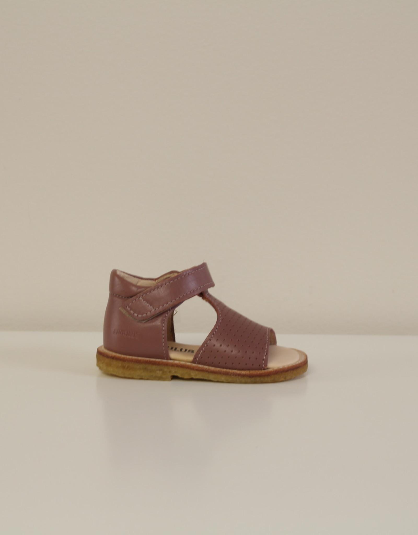 Angulus 0517-101 starter sandal velcro Plum