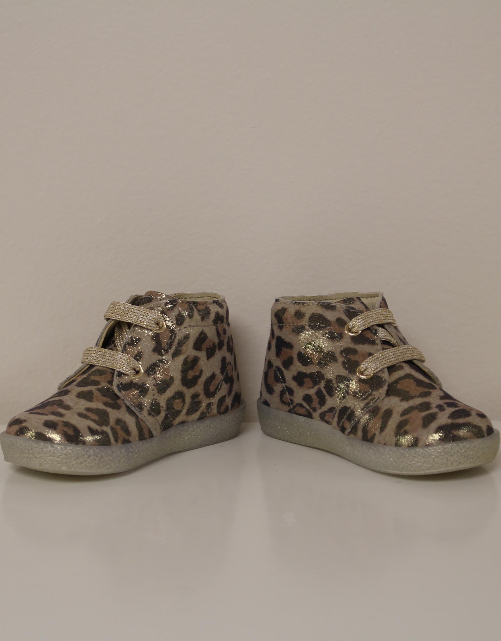 Falcotto conte eerste stapper leopard