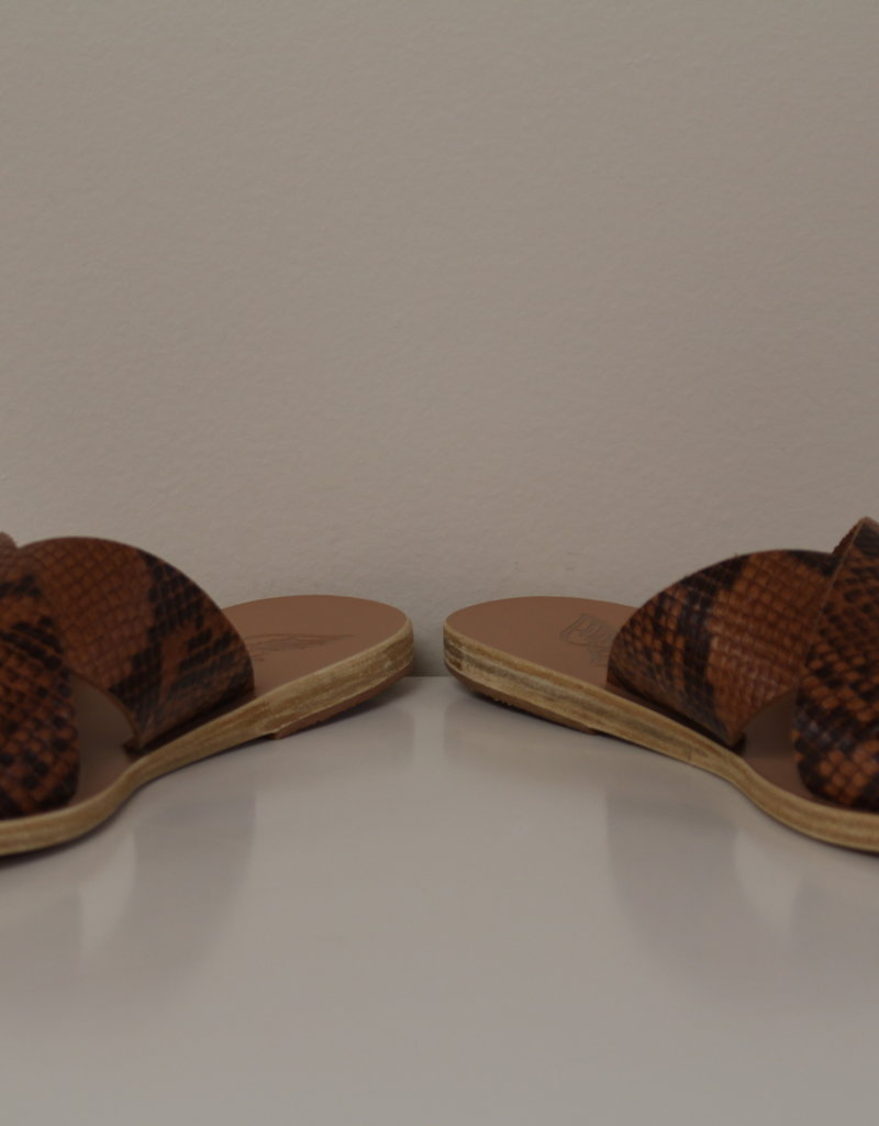 Ancient Greek Sandals Thais Python Tampa