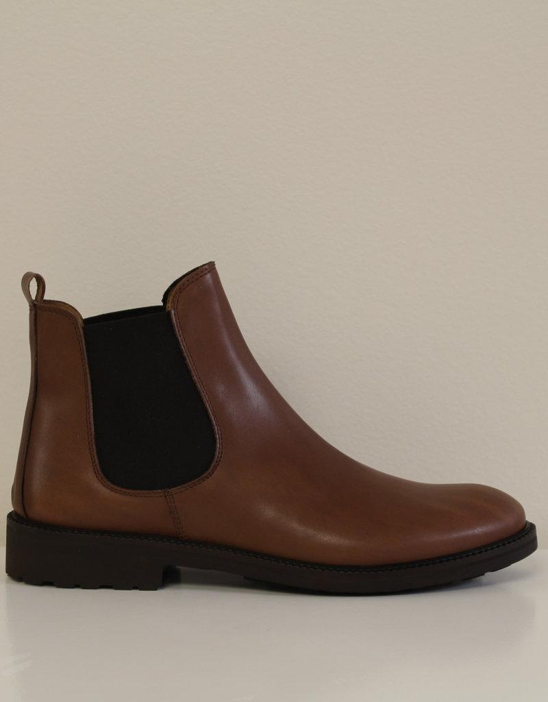 Gallucci J05078AM Harold chelsea brown