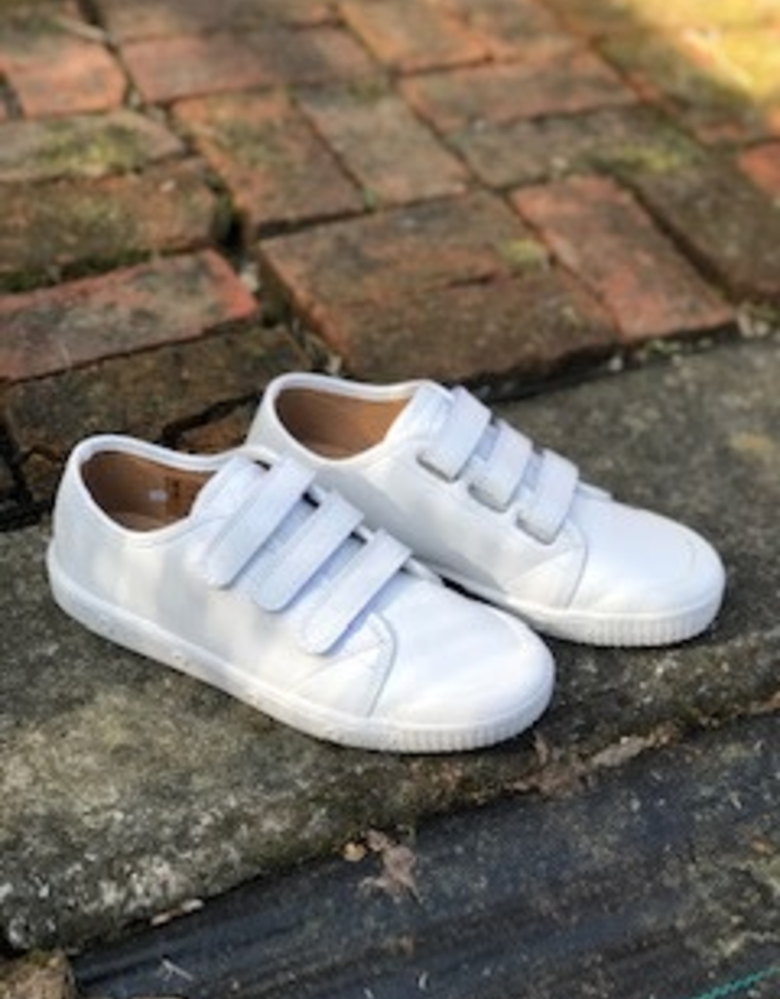 Springcourt BVT 5001-2 white