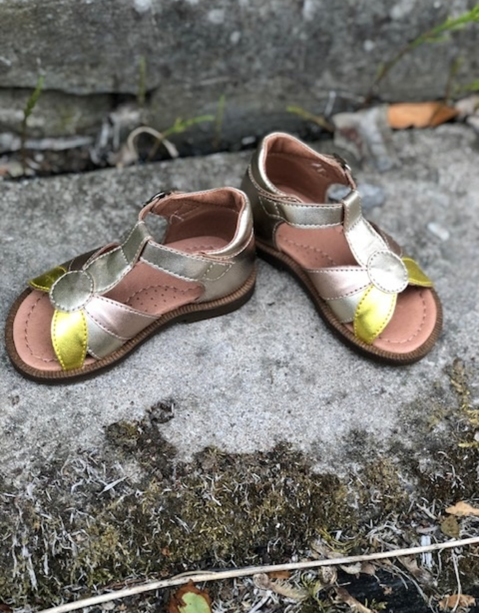 Romagnoli rose ponza sandaal