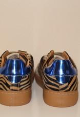 Ocra D402/9 sneaker zebra print rood blauw