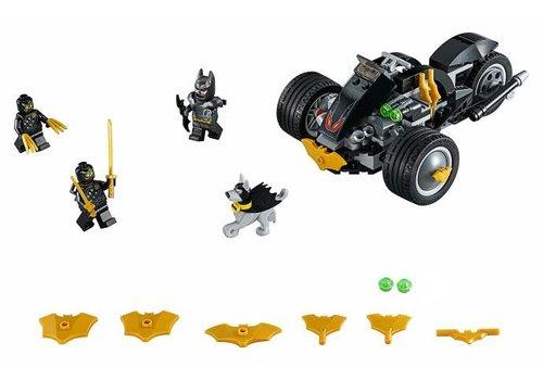 76110 Super Heroes Batman Aanval van de Talons