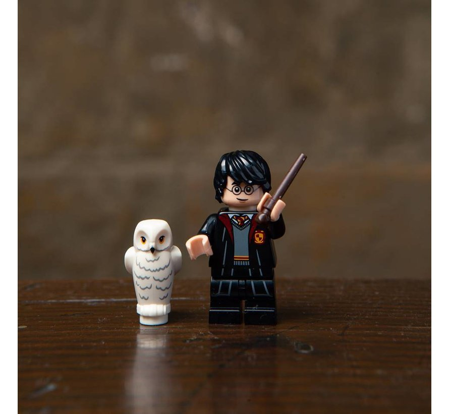 71022-1  Harry Potter
