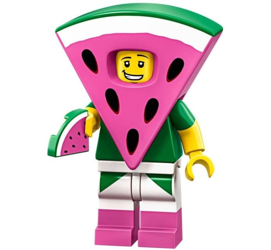 71023-8: Watermelon Dude