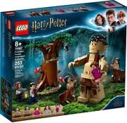 LEGO 75967 Harry Potter Het Verboden Bos: Omber's ontmoeting met Groemp