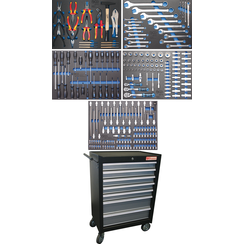 Workshop Trolley  7 Drawers  with 243 Tools