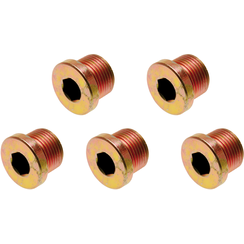 Oil Drain Plug  for BGS 126  M17 x 1.5 mm  5 pcs.