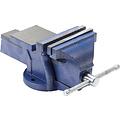 BGS  Technic Bankschroef  125 mm spanbekken