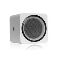 Installatie Speaker meerprijs front Chrome Alea-4