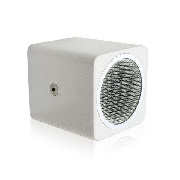 Voice-Acoustic* Installatie Speaker meerprijs ring Chrome ring voor Alea-4