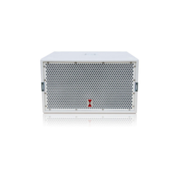 Voice-Acoustic* Subwoofer 12-inch meerprijs front kleur Paveosub-112