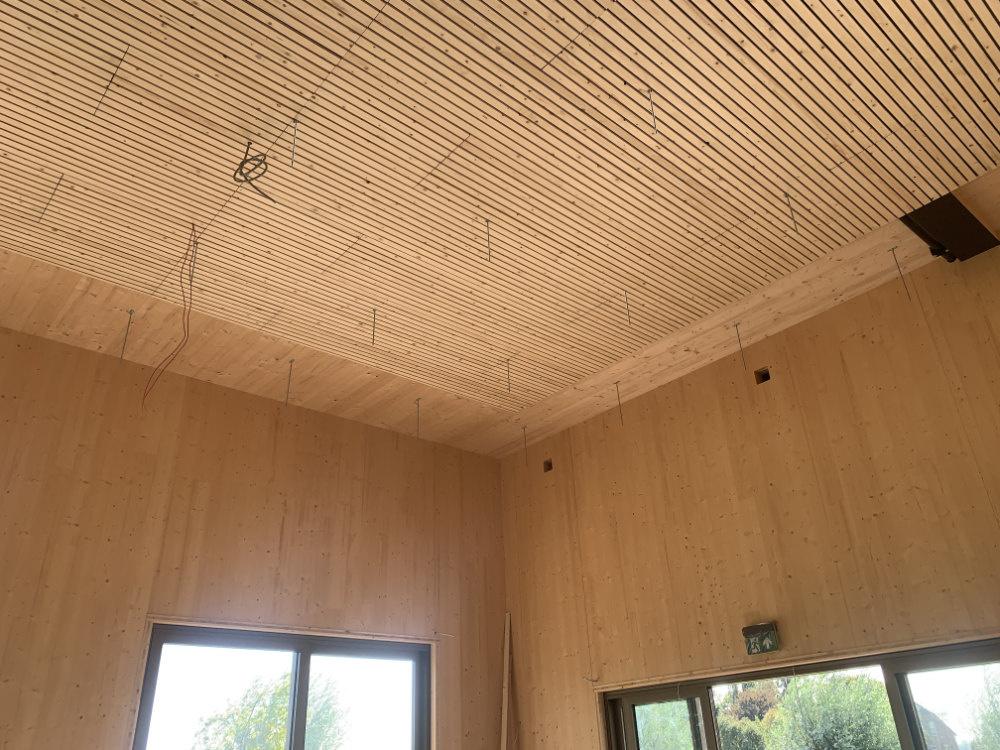 Plafond Herpt zonder grid