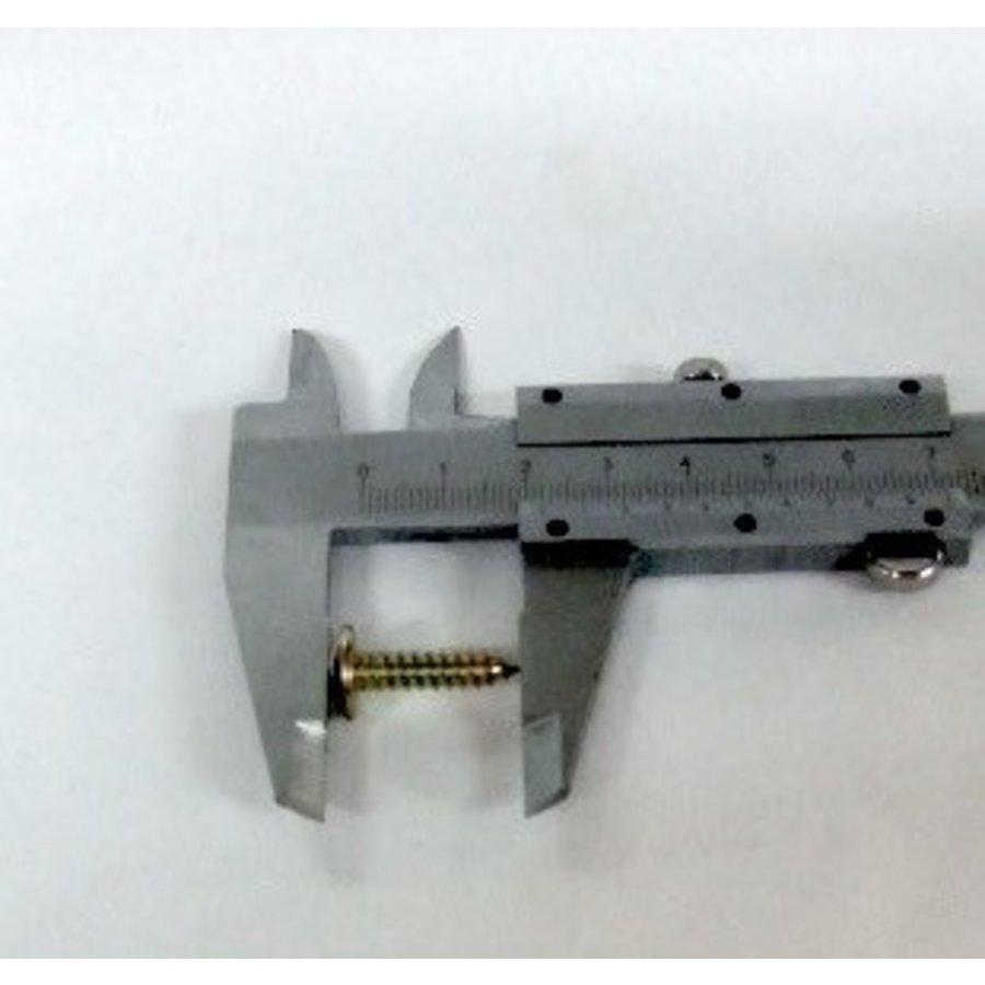 Parafuso espessura 4.5 mm, comprimento 20 mm (vendido por 10 peças)-2