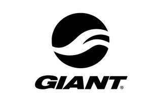 Giant E-Bike onderdelen
