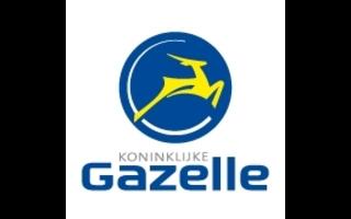 Gazelle E-Bike onderdelen