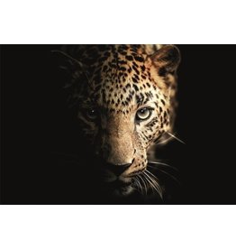 Ter Halle Glass painting 80x120 Panther