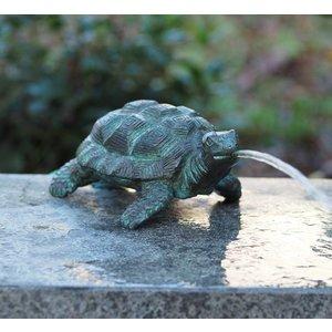 Eliassen Bild Bronze Schildkröte