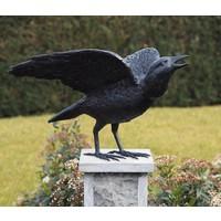 Beeld brons Raaf met open vleugels