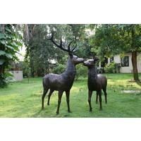 Beeld brons staande hert groot