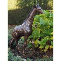 Beeld brons kleine giraf
