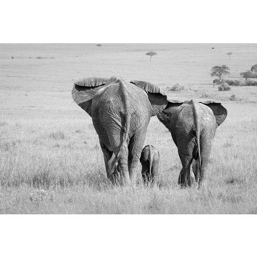 MondiArt Malerei Glas Elefant Familie 80x120cm