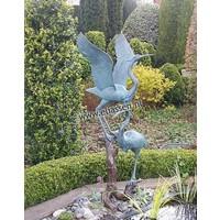 Image 2 cranes on branch