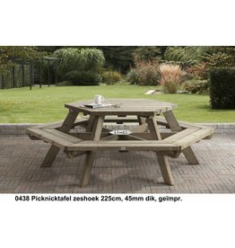 Talen Staphorst Picknicktafel zeshoek
