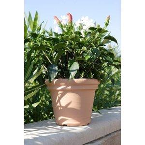 Grote kunststof bloempot Terracotta Liscio