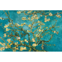 Dibond schilderij Amandelbloesem van Gogh