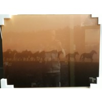 Glasmalerei Gruppe Pferde 60x80cm