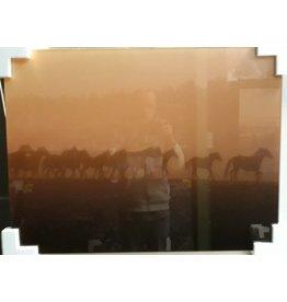 MondiArt Glass painting Group Horses 60x80cm