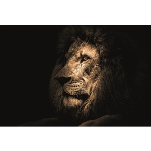 Ter Halle Glass painting 80x120 cm Lion dark