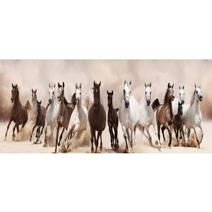 Eliassen Painting glass 60x160cm Horses
