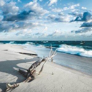 Ter Halle Foto auf Glasmalerei 100x100cm Meer