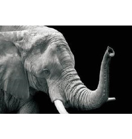 Eliassen Glass painting 50x70cm Elephant3