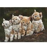 Eliassen Malerei 3d 60x80cm Katzen
