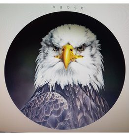 Gave Glass painting around Bird of prey slide 100 cm