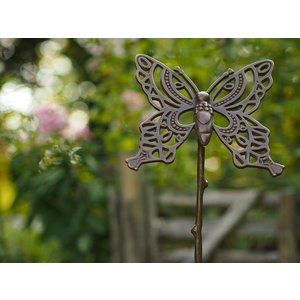 Eliassen Feuerzeug-Bronzeschmetterling des Gartens auf einem Stock