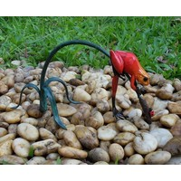 Beeld brons rode kikker aan twijg