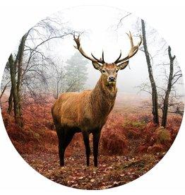 Gave Glas schilderij rond Hert diameter 80cm